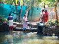 2015-02-26-Inde du sud-1151-HDm