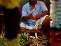 2015-03-05-Inde du sud-3621- MD