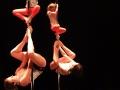 2017-02-26-Pole Dancin Side-3404-WEB