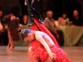 nuit-de-la-danse-montauban-2012-25
