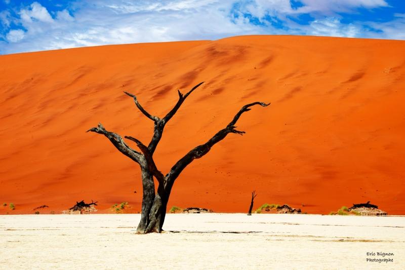 WEB-2019-11-17-Namibie-1104-MDPS