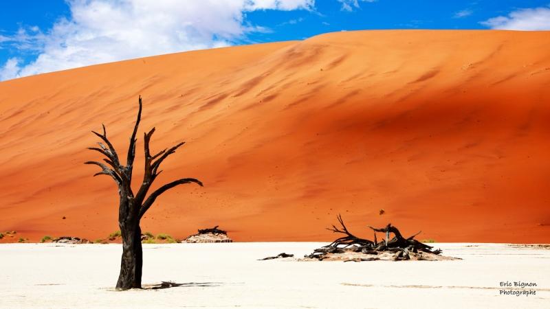 WEB-2019-11-17-Namibie-1114-MDPS