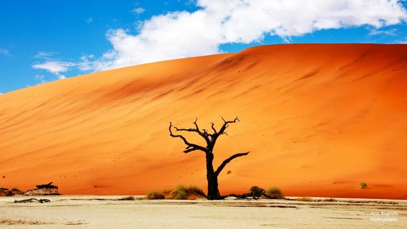 WEB-2019-11-17-Namibie-1115-MDPS