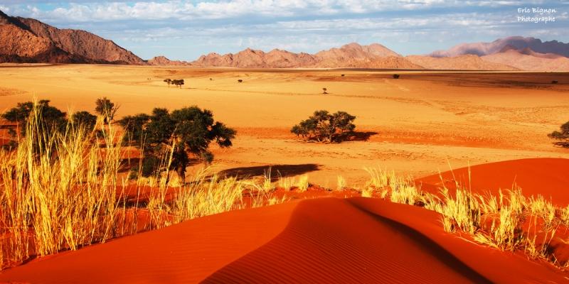 WEB-2019-11-17-Namibie-1142-MDPS