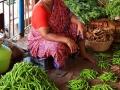 2015-03-02-Inde du sud-2218-MD