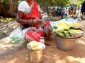 2015-03-08-Inde du sud-4331- MD