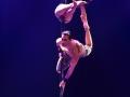 2017-02-26-Pole Dancin Side-1211-WEB