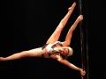 2017-02-26-Pole Dancin Side-3079-image une