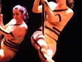 2018-03-25_Pole-Danse_1682-LD
